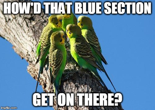 The Meeting | HOW'D THAT BLUE SECTION GET ON THERE? | image tagged in the meeting | made w/ Imgflip meme maker