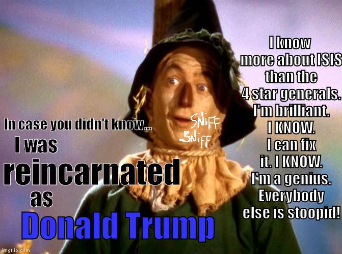 1bunbn wizard of oz scarecrow imgflip