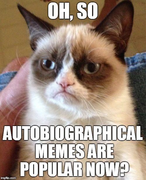 Grumpy Cat Meme | OH, SO AUTOBIOGRAPHICAL MEMES ARE POPULAR NOW? | image tagged in memes,grumpy cat | made w/ Imgflip meme maker