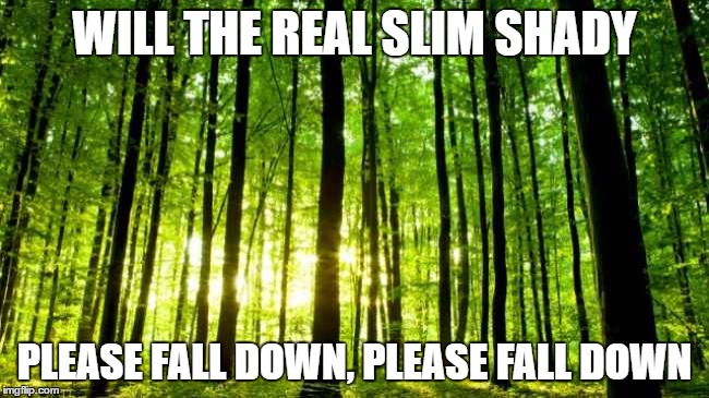 WILL THE REAL SLIM SHADY PLEASE FALL DOWN, PLEASE FALL DOWN | made w/ Imgflip meme maker