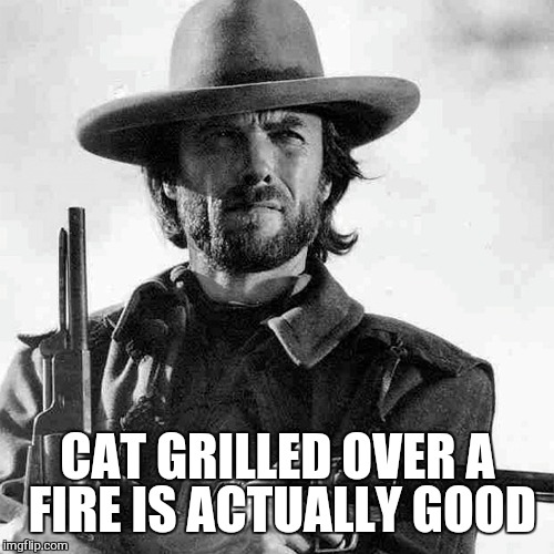 CAT GRILLED OVER A FIRE IS ACTUALLY GOOD | made w/ Imgflip meme maker
