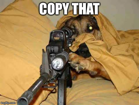 Sniper Dog | COPY THAT | image tagged in sniper dog | made w/ Imgflip meme maker