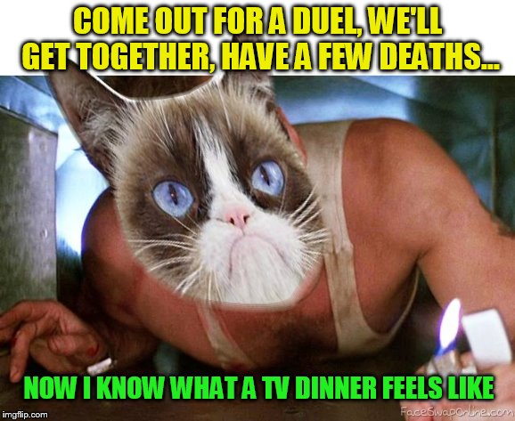 COME OUT FOR A DUEL, WE'LL GET TOGETHER, HAVE A FEW DEATHS... NOW I KNOW WHAT A TV DINNER FEELS LIKE | made w/ Imgflip meme maker