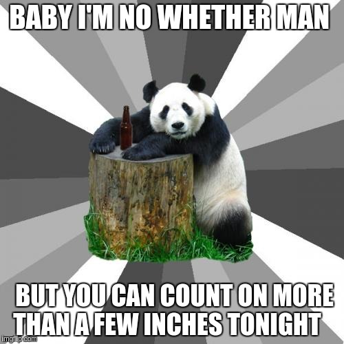 Pickup Line Panda Meme |  BABY I'M NO WHETHER MAN; BUT YOU CAN COUNT ON MORE THAN A FEW INCHES TONIGHT | image tagged in memes,pickup line panda | made w/ Imgflip meme maker