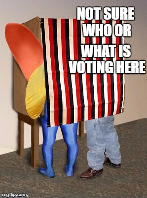 NOT SURE WHO OR WHAT IS VOTING HERE | made w/ Imgflip meme maker