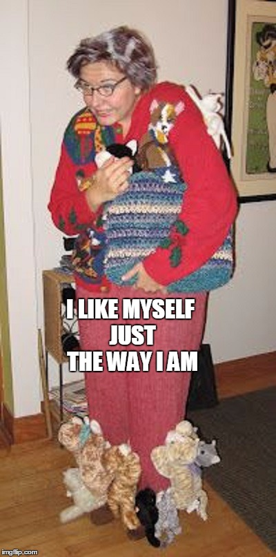 I LIKE MYSELF JUST THE WAY I AM | made w/ Imgflip meme maker