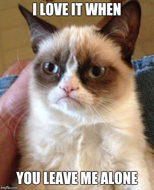 Grumpy Cat Meme |  I LOVE IT WHEN; YOU LEAVE ME ALONE | image tagged in memes,grumpy cat | made w/ Imgflip meme maker