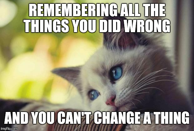 Sad Kitty | REMEMBERING ALL THE THINGS YOU DID WRONG AND YOU CAN'T CHANGE A THING | image tagged in sad kitty | made w/ Imgflip meme maker
