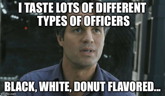 I TASTE LOTS OF DIFFERENT TYPES OF OFFICERS BLACK, WHITE, DONUT FLAVORED... | made w/ Imgflip meme maker