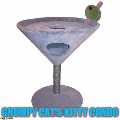 GRUMPY CAT'S KITTY CONDO | made w/ Imgflip meme maker