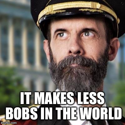IT MAKES LESS BOBS IN THE WORLD | made w/ Imgflip meme maker