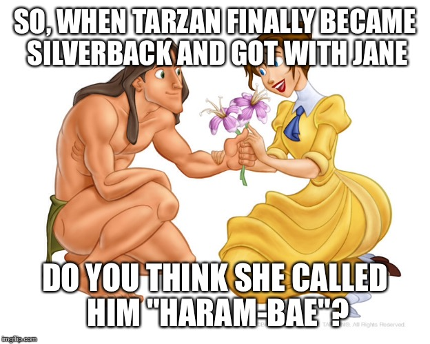 "Haram-bae |  SO, WHEN TARZAN FINALLY BECAME SILVERBACK AND GOT WITH JANE; DO YOU THINK SHE CALLED HIM ""HARAM-BAE""? 