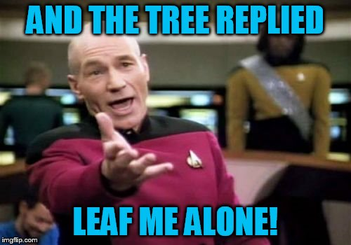 Picard Wtf Meme | AND THE TREE REPLIED LEAF ME ALONE! | image tagged in memes,picard wtf | made w/ Imgflip meme maker