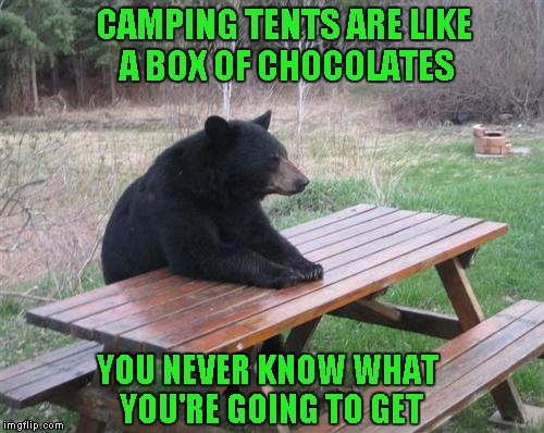 Bad Luck Bear Meme | CAMPING TENTS ARE LIKE A BOX OF CHOCOLATES YOU NEVER KNOW WHAT YOU'RE GOING TO GET | image tagged in memes,bad luck bear | made w/ Imgflip meme maker
