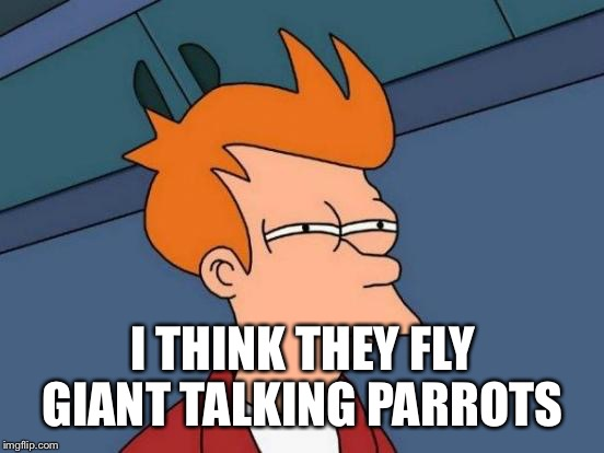 Futurama Fry Meme | I THINK THEY FLY GIANT TALKING PARROTS | image tagged in memes,futurama fry | made w/ Imgflip meme maker