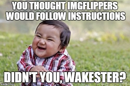Evil Toddler Meme | YOU THOUGHT IMGFLIPPERS WOULD FOLLOW INSTRUCTIONS DIDN'T YOU, WAKESTER? | image tagged in memes,evil toddler | made w/ Imgflip meme maker