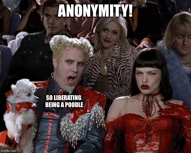 Mugatu So Hot Right Now Meme | ANONYMITY! SO LIBERATING BEING A POODLE | image tagged in memes,mugatu so hot right now | made w/ Imgflip meme maker