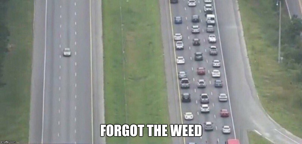 Highway evacuation | FORGOT THE WEED | image tagged in highway evacuation | made w/ Imgflip meme maker