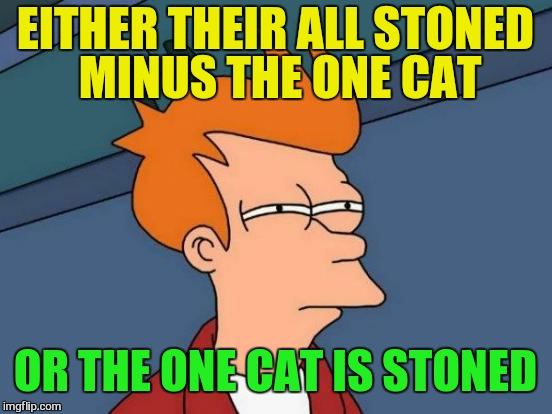 Futurama Fry Meme | EITHER THEIR ALL STONED MINUS THE ONE CAT OR THE ONE CAT IS STONED | image tagged in memes,futurama fry | made w/ Imgflip meme maker