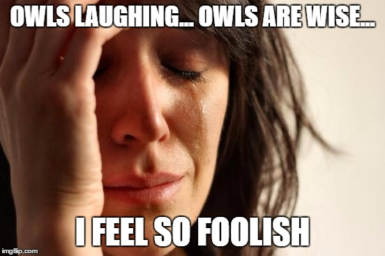 First World Problems Meme | OWLS LAUGHING... OWLS ARE WISE... I FEEL SO FOOLISH | image tagged in memes,first world problems | made w/ Imgflip meme maker