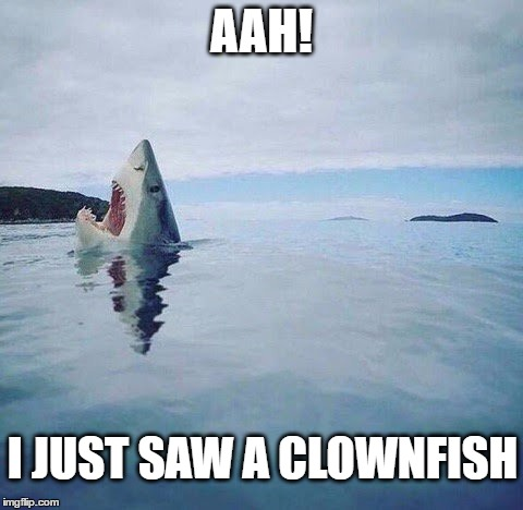 Who Knows What May Be Lurking In The Deep | AAH! I JUST SAW A CLOWNFISH | image tagged in shark_head_out_of_water,clowns,scary clown | made w/ Imgflip meme maker