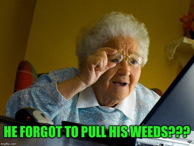 Grandma Finds The Internet Meme | HE FORGOT TO PULL HIS WEEDS??? | image tagged in memes,grandma finds the internet | made w/ Imgflip meme maker