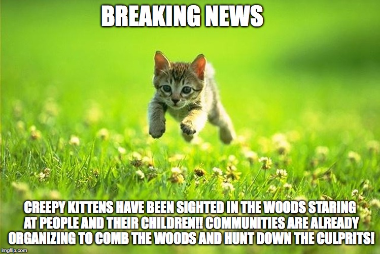 BREAKING NEWS CREEPY KITTENS HAVE BEEN SIGHTED IN THE WOODS STARING AT PEOPLE AND THEIR CHILDREN!! COMMUNITIES ARE ALREADY ORGANIZING TO COM | image tagged in creepy clowns,creepy kittens,kittys,clowns,american fear,absurd | made w/ Imgflip meme maker