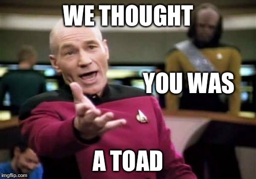Picard Wtf Meme | WE THOUGHT A TOAD YOU WAS | image tagged in memes,picard wtf | made w/ Imgflip meme maker