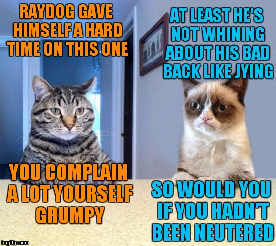 Take a seat cat and grumpy cat review | RAYDOG GAVE HIMSELF A HARD TIME ON THIS ONE SO WOULD YOU IF YOU HADN'T BEEN NEUTERED AT LEAST HE'S NOT WHINING ABOUT HIS BAD BACK LIKE JYING | image tagged in take a seat cat and grumpy cat review | made w/ Imgflip meme maker