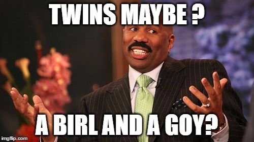 Steve Harvey Meme | TWINS MAYBE ? A BIRL AND A GOY? | image tagged in memes,steve harvey | made w/ Imgflip meme maker