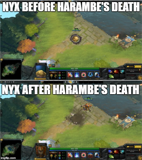 Nyx Out for Harambe | NYX BEFORE HARAMBE'S DEATH NYX AFTER HARAMBE'S DEATH | image tagged in harambe,dota 2,popular,fresh,funny,gaming | made w/ Imgflip meme maker