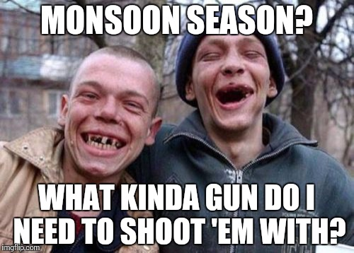 Ugly Twins Meme | MONSOON SEASON? WHAT KINDA GUN DO I NEED TO SHOOT 'EM WITH? | image tagged in memes,ugly twins | made w/ Imgflip meme maker