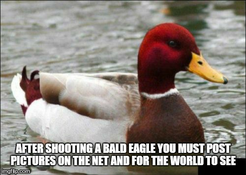 AFTER SHOOTING A BALD EAGLE YOU MUST POST PICTURES ON THE NET AND FOR THE WORLD TO SEE | made w/ Imgflip meme maker