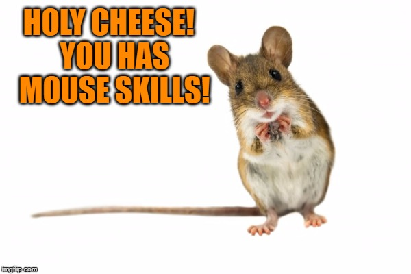 HOLY CHEESE!  YOU HAS MOUSE SKILLS! | made w/ Imgflip meme maker
