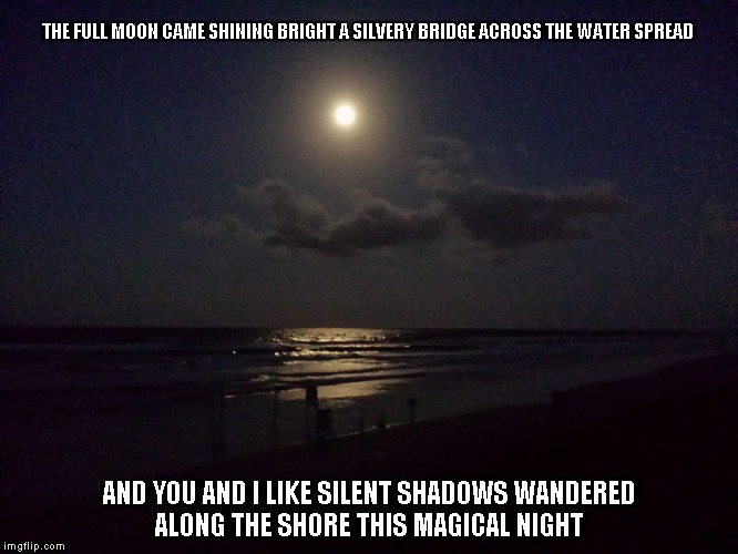 Magical Night |  THE FULL MOON CAME SHINING BRIGHT A SILVERY BRIDGE ACROSS THE WATER SPREAD; AND YOU AND I LIKE SILENT SHADOWS WANDERED ALONG THE SHORE THIS MAGICAL NIGHT | image tagged in nights,the moon,shadows,magic | made w/ Imgflip meme maker