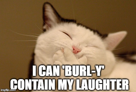 I CAN 'BURL-Y' CONTAIN MY LAUGHTER | made w/ Imgflip meme maker
