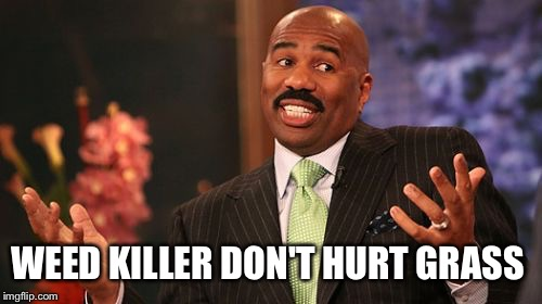 Steve Harvey Meme | WEED KILLER DON'T HURT GRASS | image tagged in memes,steve harvey | made w/ Imgflip meme maker