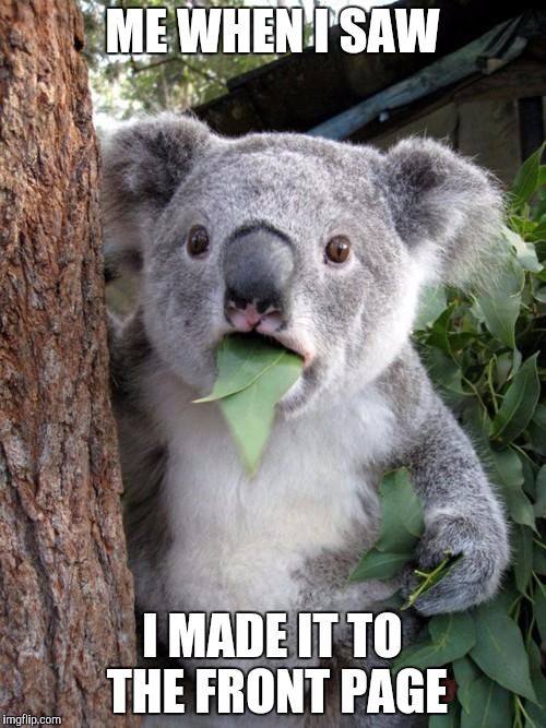 Surprised Koala Meme | ME WHEN I SAW I MADE IT TO THE FRONT PAGE | image tagged in memes,surprised koala | made w/ Imgflip meme maker