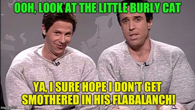 OOH, LOOK AT THE LITTLE BURLY CAT YA, I SURE HOPE I DON'T GET SMOTHERED IN HIS FLABALANCH! | made w/ Imgflip meme maker