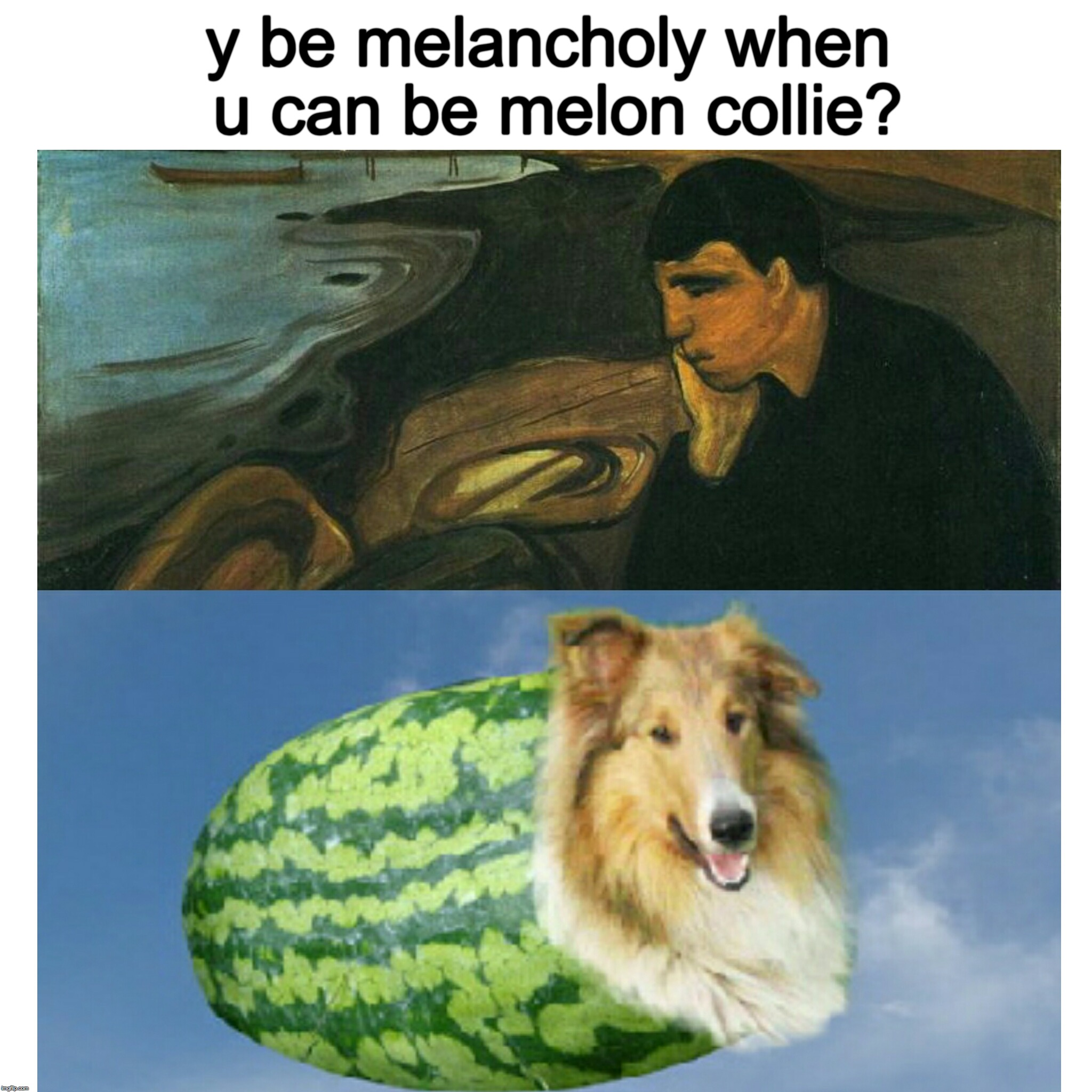 Melon Collie  | y be melancholy when u can be melon collie? | image tagged in sad,border collie,bad pun dog,dogs,funny dogs,depression | made w/ Imgflip meme maker