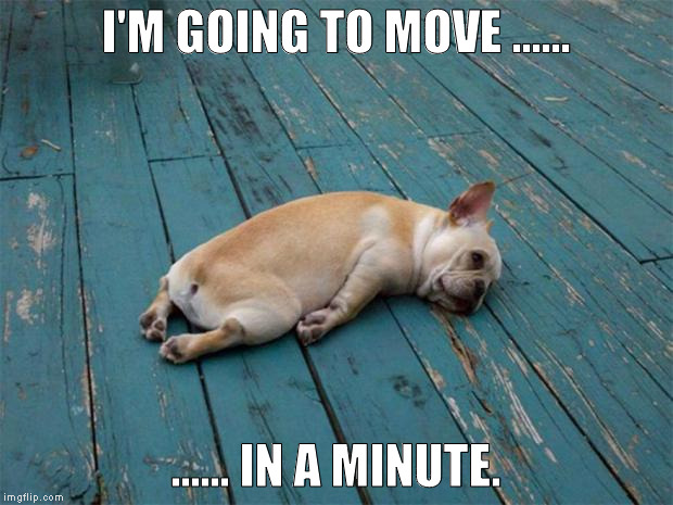 Sadness | I'M GOING TO MOVE ...... ...... IN A MINUTE. | image tagged in sadness | made w/ Imgflip meme maker