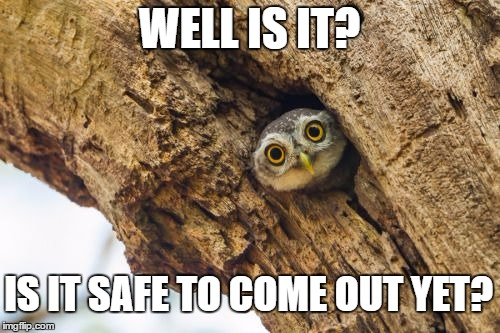 WELL IS IT? IS IT SAFE TO COME OUT YET? | made w/ Imgflip meme maker