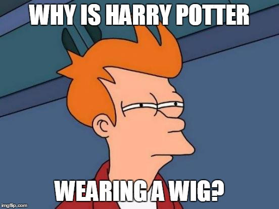 Futurama Fry Meme | WHY IS HARRY POTTER WEARING A WIG? | image tagged in memes,futurama fry | made w/ Imgflip meme maker