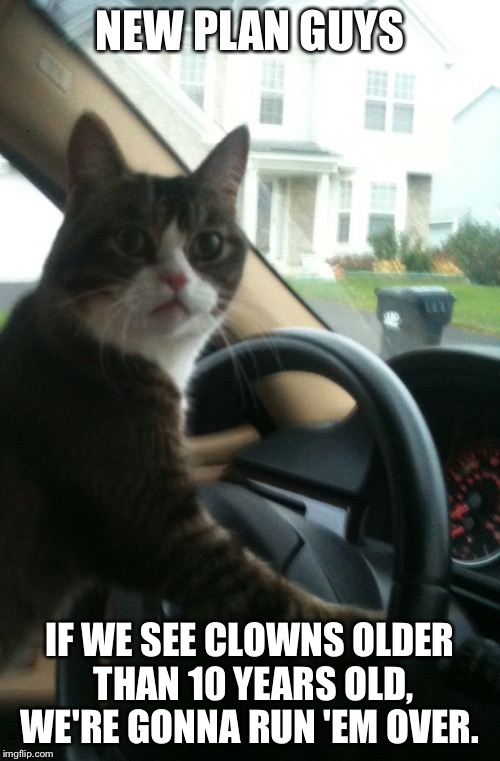 JoJo the Driving Cat Does Not Like Creepy Clowns  | NEW PLAN GUYS IF WE SEE CLOWNS OLDER THAN 10 YEARS OLD, WE'RE GONNA RUN 'EM OVER. | image tagged in jojo the driving cat,memes,creepy clowns,run em over,down with the clowns,100 bucks for every rainbow wig you bring me | made w/ Imgflip meme maker