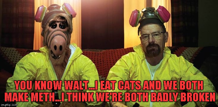 A Breaking Bad/Alf crossover would've been hilarious... |  YOU KNOW WALT...I EAT CATS AND WE BOTH MAKE METH...I THINK WE'RE BOTH BADLY BROKEN | image tagged in breaking bad walt  alf,memes,breaking bad,alf,funny,tv shows | made w/ Imgflip meme maker