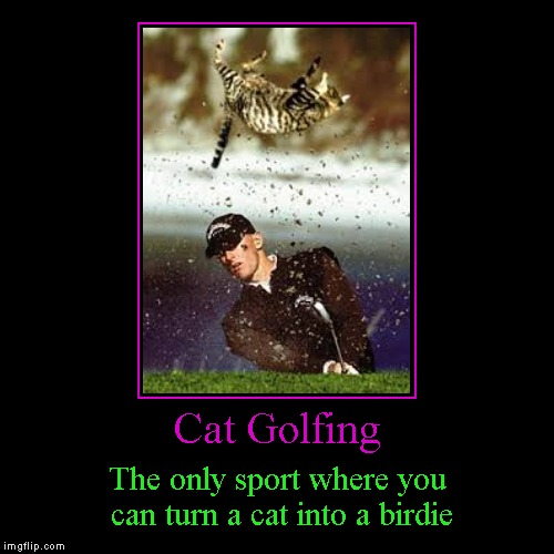 I hear it relieves stress quite well... | Cat Golfing | The only sport where you can turn a cat into a birdie | image tagged in funny,demotivationals,cat golf,golf,cats,animals | made w/ Imgflip demotivational maker