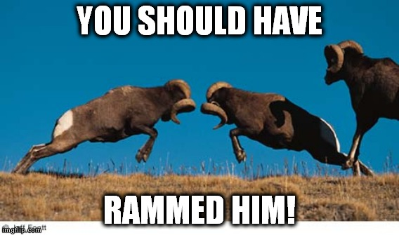 YOU SHOULD HAVE RAMMED HIM! | made w/ Imgflip meme maker
