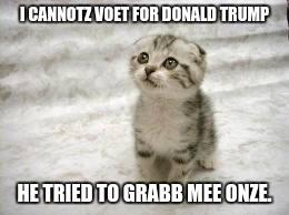 Cats Against Donald Trump Imgflip