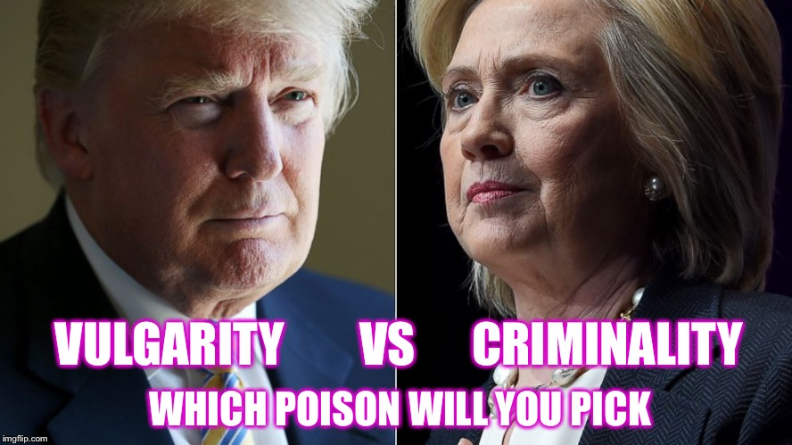 A little arsenic and cyanide never hurt anyone  | VULGARITY        VS      CRIMINALITY WHICH POISON WILL YOU PICK | image tagged in trump hillary,election 2016 | made w/ Imgflip meme maker