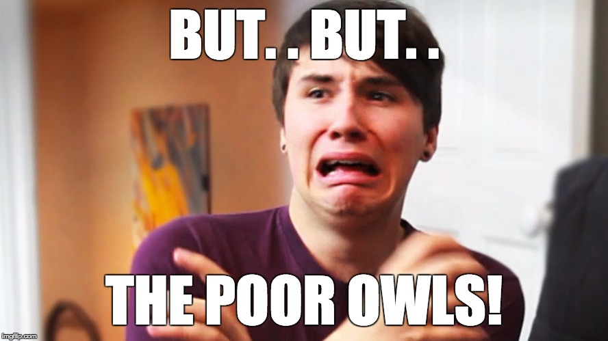 BUT. . BUT. . THE POOR OWLS! | made w/ Imgflip meme maker